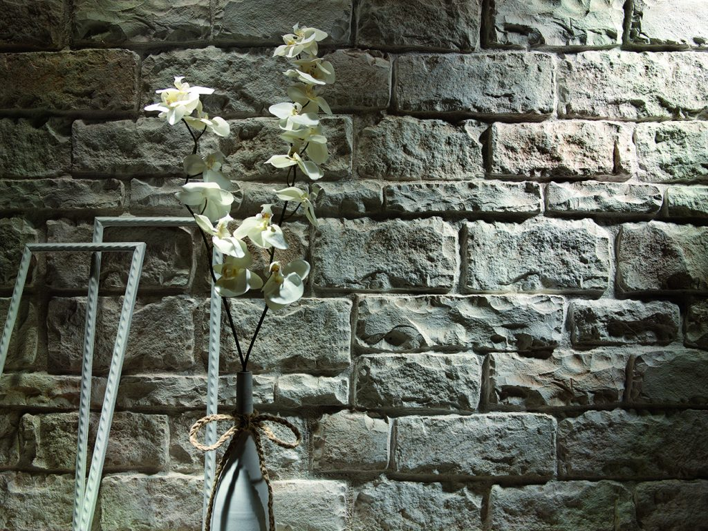 Sandy-White-Liebana-flower-close-up-52